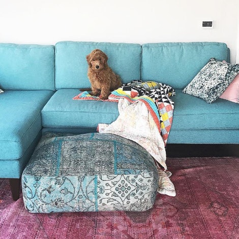 Levi Sectional - Photo by Alyse Brautigam
