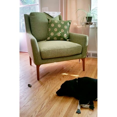 Patterson Chair - Photo by Lisa Deromanis