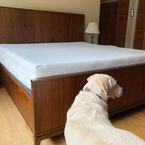 Fenton Bed - Photo by Jennifer Hirsch