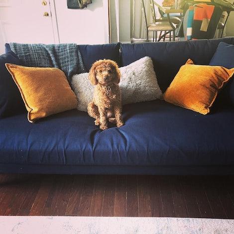 Bates Slipcover Sofa - Photo by Leia T. P.